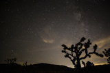 The Star-Filled Night Sky over Lost Horse Valley in Joshua Tree National Park