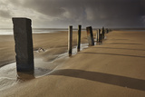 Groyne Posts Seen in Stormy Sunlight on the Beach at Berrow  Somerset