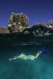 A Snorkeler Swimming Underwater