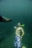 A Naturalist Guide  Playing with a Galapagos Sea Lion Pup
