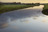 The River Brue Flowing Through Countryside on the Somerset Levels  Near Glastonbury