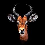 Low Poly Safari Art - The Look of Antelope - Black Edition