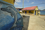 Painted Mural of a Dolphin on the Side of Colorful Houses on Taboga Island