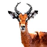Low Poly Safari Art - The Antelope - White Edition