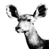 Low Poly Safari Art - Antelope - White Edition II
