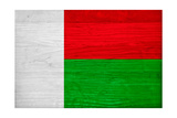 Madagascar Flag Design with Wood Patterning - Flags of the World Series