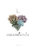Succulent Life II
