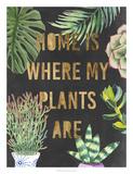 Plant Gold VI *Exclusive*
