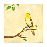 Bird Song I