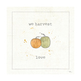 Harvest Cuties I