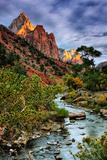 Virgin River Morning View  Zion National Park  Utah