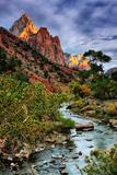 Virgin River Morning View  Zion National Park  Utah