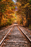 Tracks Into Fall  White Mountains New Hampshire  New England in Autumn