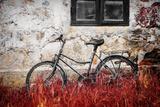 The Forgotten Bike Papier Photo par Philippe Sainte-Laudy