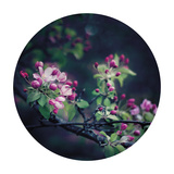 Floral Elegance - Sphere