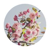 Spring Morning - Sphere
