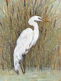 White Egret II