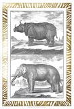 Gilded Safari I