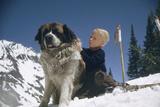 Young Blonde Boy on Skiis with St Bernard Dog at Sun Valley Ski Resort  Idaho  April 22  1947