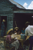 Men Watch Three Young Women Pluck Feathers from Chickenss  Edisto Island  South Carolina  1956