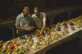 1955: Judges Examining Produce Entries in the Agriculture Building at the Iowa State Fair