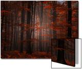 Spiritual Wood