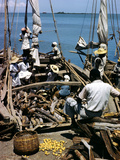 December 1946: Fishermen at in Port Au Prince Harbor in Haiti