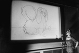 Walt Disney Voice Artists Working on Feature Cartoon  the Lady and the Tramp  Burbank  CA  1953