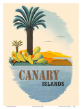 Canary Islands - Palm Trees and Cactus Reproduction d'art par Pacifica Island Art