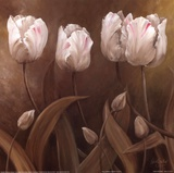 Sepia Tulips II