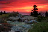 The Rising Sun over Atlantic Ocean and Boulders and Flora Atop Cadillac Mountain