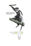 Guereza or Abyssinian  Black-And-White Colobus (Colobus Guereza)  Monkey  Mammals