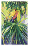 Jardin Abstracto II Reproduction d'art par Suzanne Wilkins