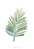 Untethered Palm V